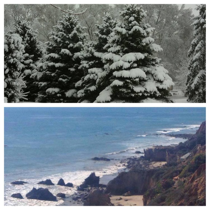 beach-vs-snow